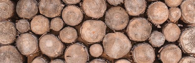 Il fondo di struttura di legno ha molti ceppi che tagliano da