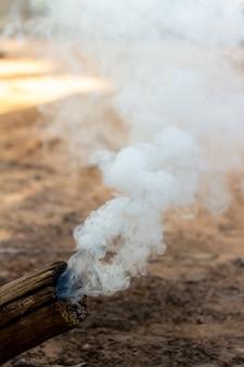 Il fuoco brucia i rami, foglie secche, provocando fumo nel giardino.