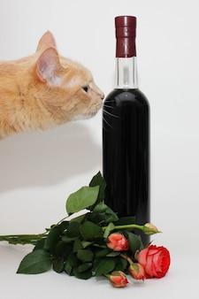 Il gatto rosso annusa una bottiglia sigillata di vino rosso scuro vicino a un mazzo di roselline