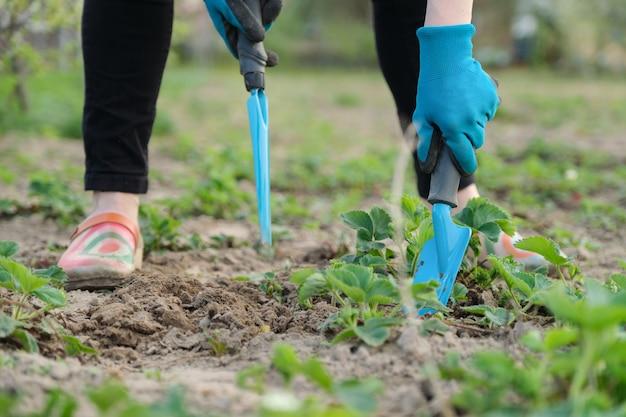 Il giardiniere coltiva il terreno con utensili manuali