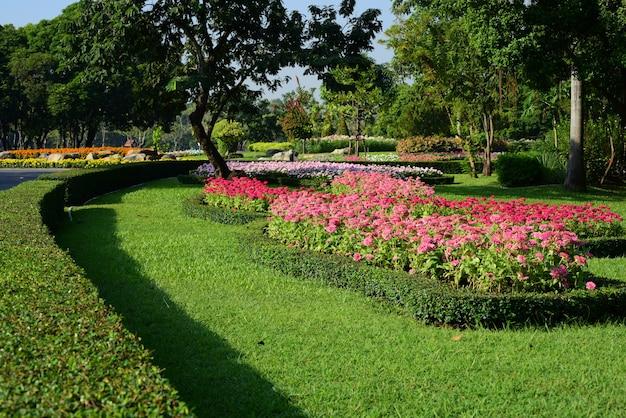 Il giardiniere sta innaffiando i fiori nel parco