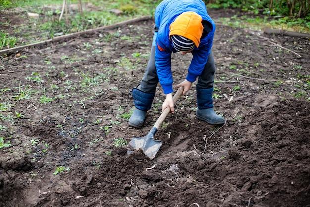 Il giardiniere sta scavando in giardino.