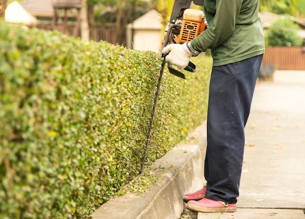 Il giardiniere sta tagliando i rami