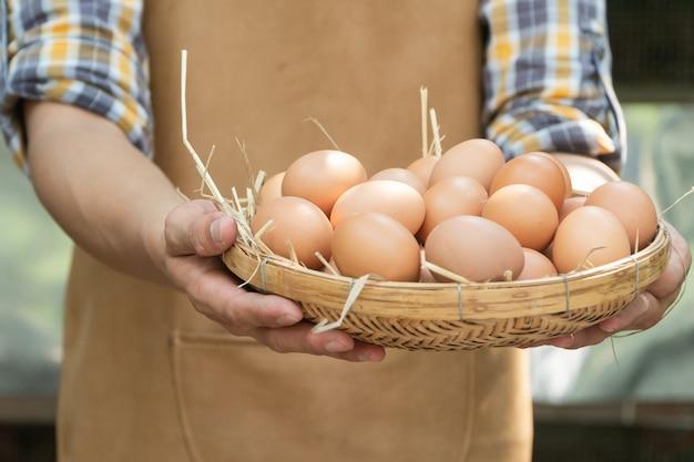 Il giovane agricoltore astuto indossa la camicia a maniche lunghe scozzese. il grembiule marrone tiene in mano uova di gallina fresche
