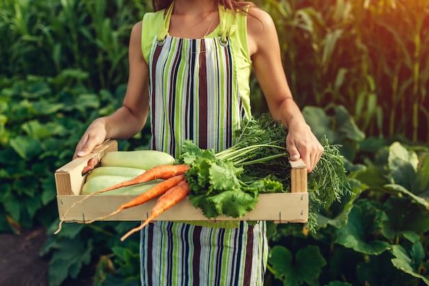 Il giovane agricoltore che tiene la scatola di legno ha riempito di verdura fresca. la donna ha raccolto il raccolto estivo.