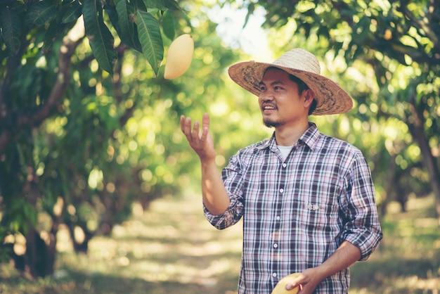Il giovane agricoltore si diverte con il mango