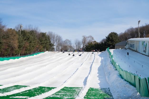 Il gruppo non identificato tourist si diverte a giocare a sci e snowboard all'everland resort park