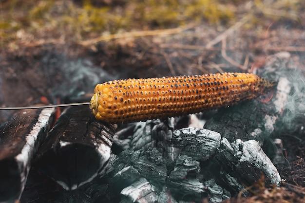 Il mais giallo è grigliato sui carboni aperti all'aria aperta, primo piano.
