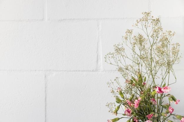 Il mazzo dei fiori e ramoscelli della pianta si avvicinano alla parete