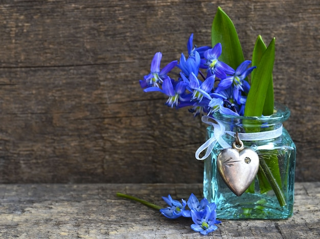 Il mazzo della molla blu di scilla fiorisce in un vaso di vetro su vecchio fondo di legno. messa a fuoco selettiva.