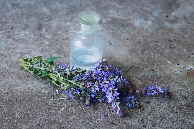 Il mazzo salvia pratensis, il clary del prato o la salvia prato fiorisce i fiori viola vicino alla bottiglia di medicina
