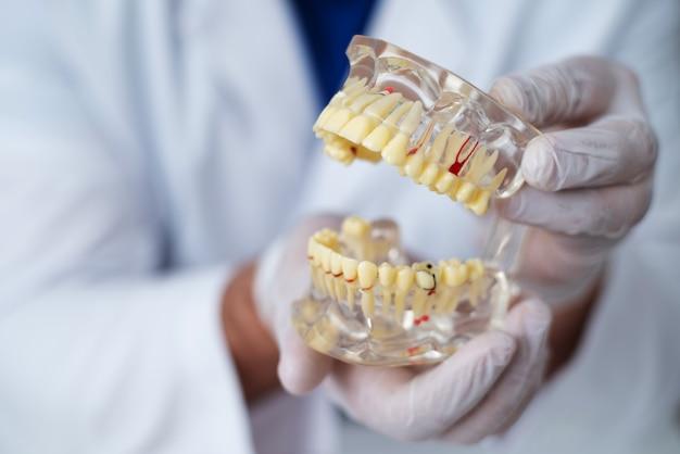 Il medico ortodontista mostra lo strumento sulla carie nei denti