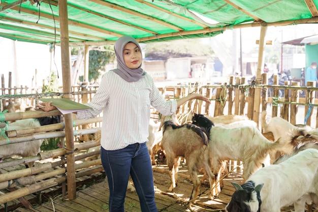 Il medico veterinario musulmano controlla la capra nella fattoria tradizionale