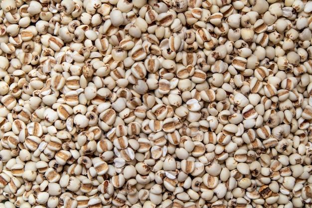 Il miglio è un cereale ed è cibo