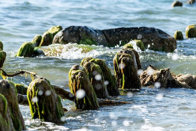 Il molo di legno rotto rimane in mare. bellissimo colore dell'acqua alla luce del sole. marea e spruzzi di mare. alghe invase invecchiate vecchie poste di legno.