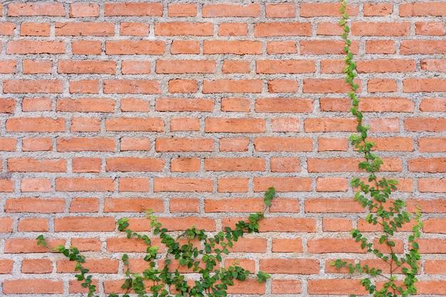 Il muro è fatto di mattoni e poi dipinto di bianco