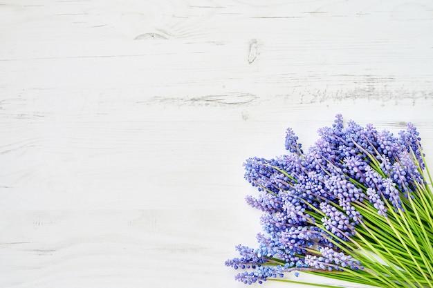 Il muscari blu del fondo della primavera fiorisce su fondo di legno bianco