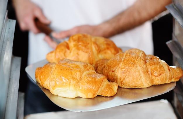 Il panettiere che tiene un vassoio con i croissant francesi di recente cotti si chiude su