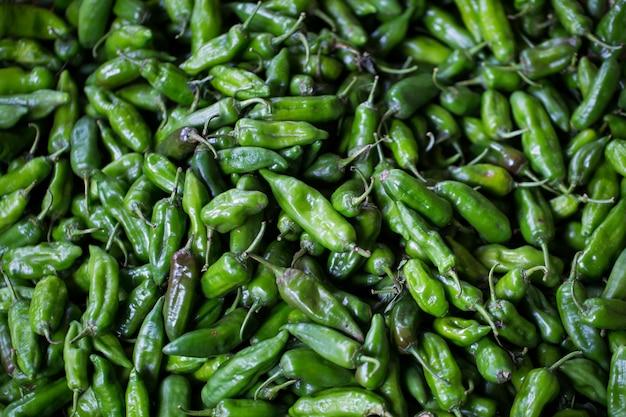Il peperoncino fresco viene venduto sul mercato. il mercato indiano a mauritius