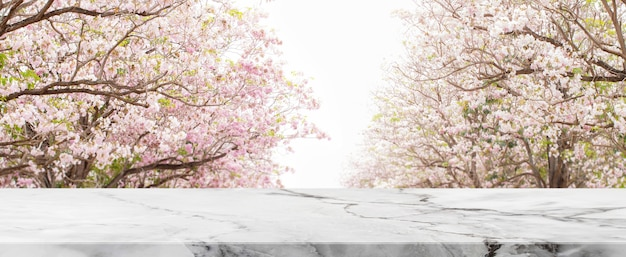 Il piano d'appoggio di pietra e l'albero vago dei fiori nel fondo dell'insegna del parco - possono essere usati per la visualizzazione o il montaggio dei vostri prodotti.