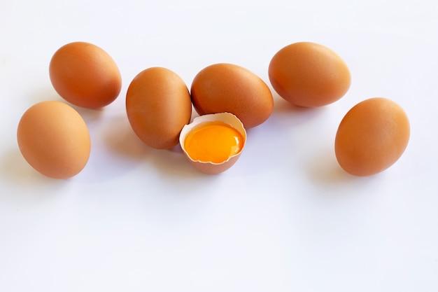 Il pollo eggs con tuorlo su fondo bianco.