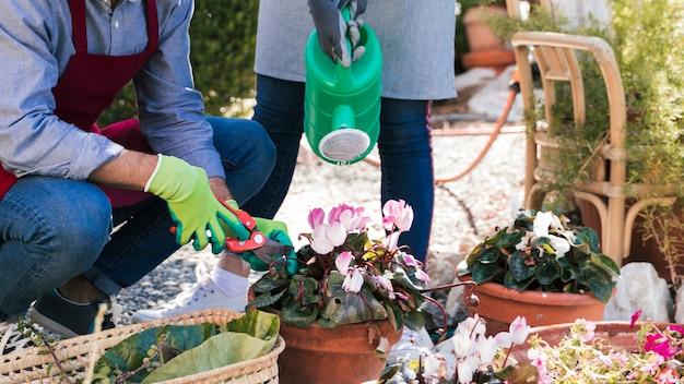 Il primo piano del giardiniere maschio e femminile innaffia e taglia il cespuglio con le cesoie in giardino