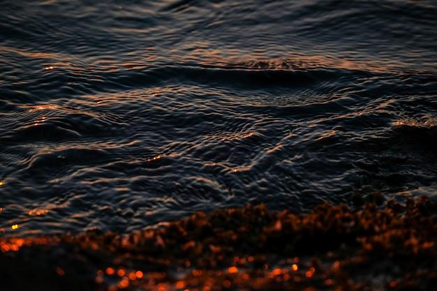 Il primo piano del mare ondeggia la riva vicina con le piante gialle