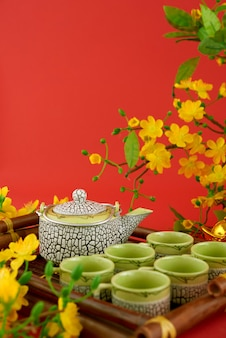 Il primo piano dell'insieme di tè è servito contro fondo e i fiori rossi