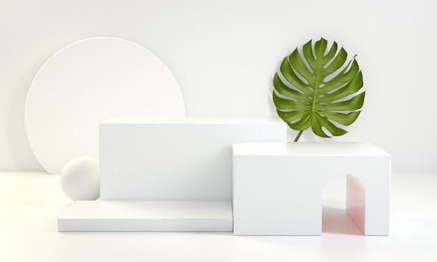 Il quadrato bianco del podio con il fondo della pianta di monstera 3d rende