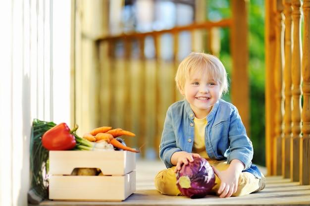 Il ragazzino sveglio gode del raccolto organico in giardino domestico