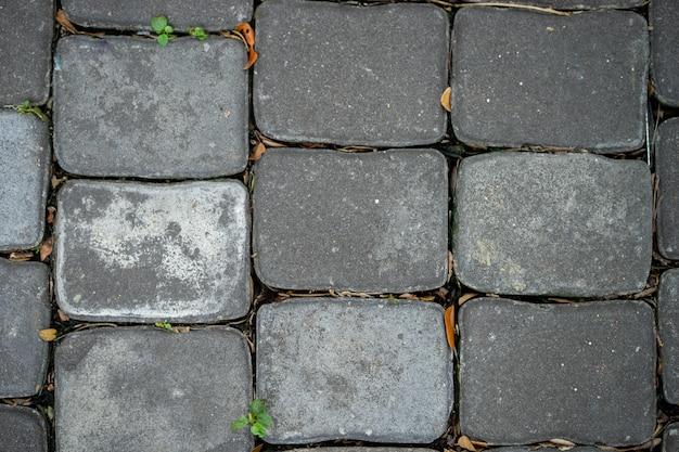 Il sentiero è realizzato collegando blocchi di cemento quadrati.