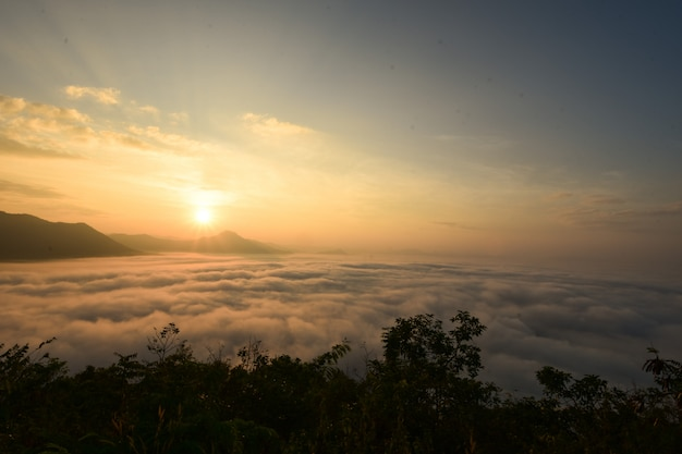 Il sole splende la mattina in inverno.