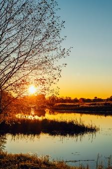Il sole tra i rami di un albero sulla riva del fiume