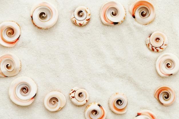 Il telaio è rivestito con conchiglie di mare