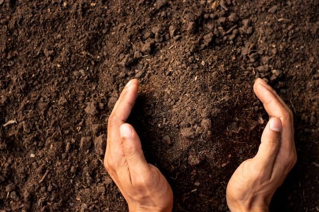 Il terriccio fertile è adatto per piantare alberi.