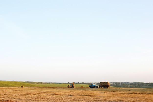 Il trattore ara il campo, coltiva il terreno per la semina del grano. il concetto di agricoltura e macchine agricole.