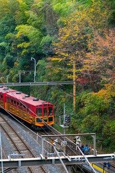 Il treno romantico sta correndo sulla piattaforma