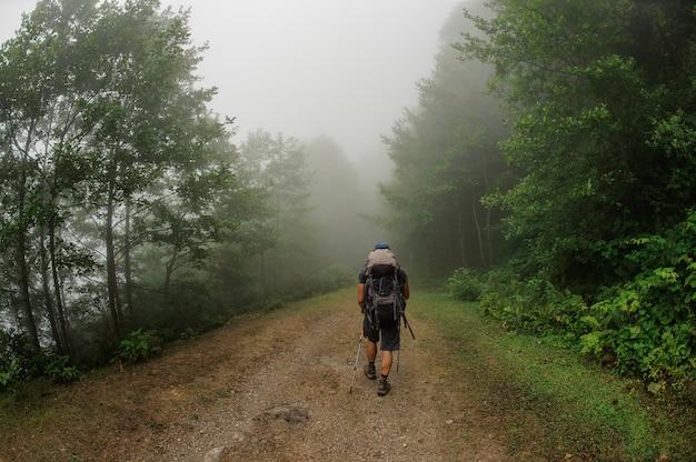 Il turista maschio con lo zaino cammina attraverso la foresta