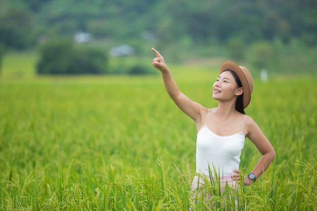 Il viaggiatore della donna con il cappello dello zaino e l'esame si trova su un prato nelle montagne.