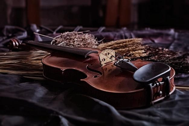 Il violino di legno accanto al fiore secco