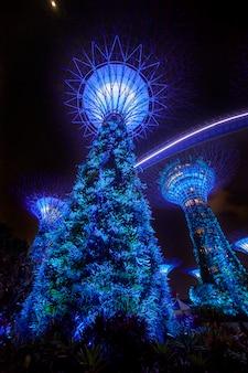 Illuminazione dello spettacolo di luci notturne al garden by the bay