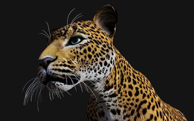 Illustrazione 3d del leopardo isolato su priorità bassa nera