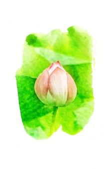 Illustrazione ad acquerello fiore