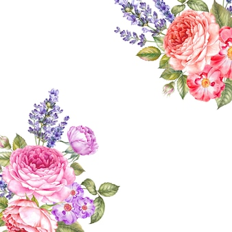 Illustrazione botanica dell'acquerello