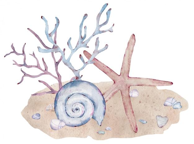 Illustrazione dell'acquerello di conchiglie subacquee, stelle marine e alghe sulla sabbia. composizione marina.