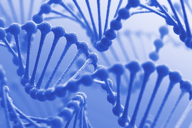 Illustrazione della catena genetica del dna