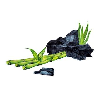 Illustrazione di pezzi di carbone, bastoncini di bambù e foglie. pittura ad acquerello