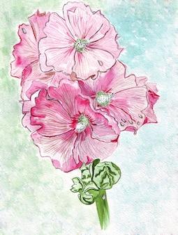 Illustrazione giovani fiori campana