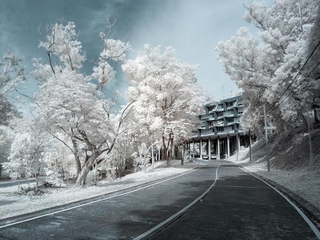 Immagine a infrarossi la strada passa sotto l'edificio.
