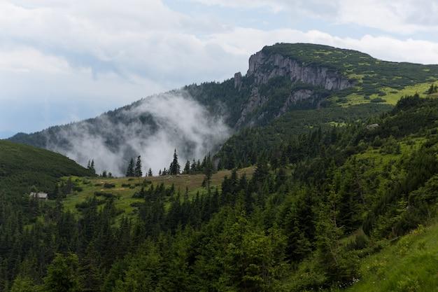 Immagine dalle montagne orientali dei carpazi